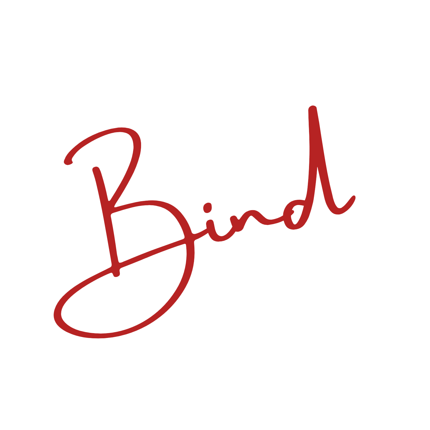 Bind - SEO & Web Development